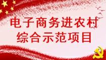 汤原县电子商务进农村综合示范项目